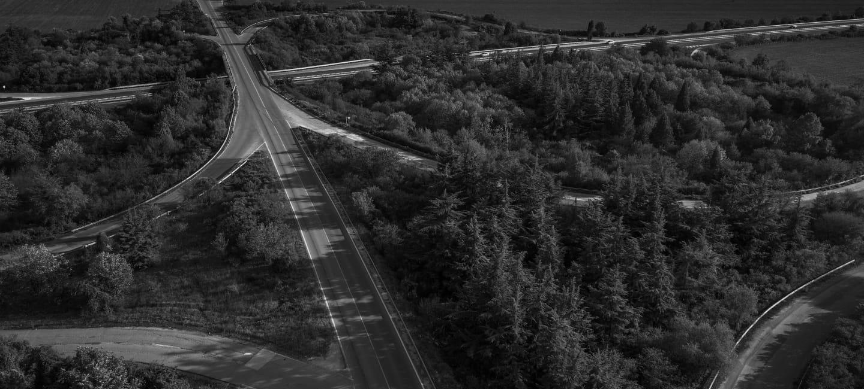 Highways through treelines